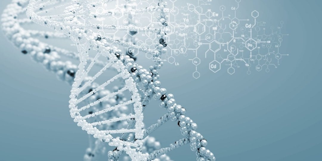 Obesity Genes Uncovering The Truth by Dr. Sara Detox Toronto Naturopath