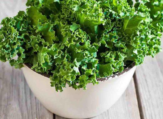 Kale Chips Detox Cleanse Friendly by Dr. Sara Detox Toronto Naturopath